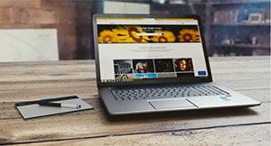 Website-300