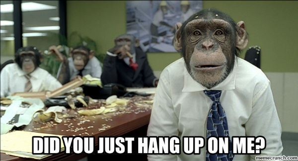 Cold Calling Monkey